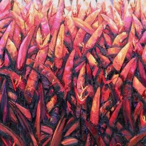 Heliconia Fire II