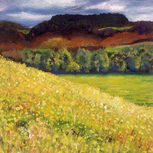 Kangaroo Valley Spring